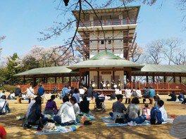 生田緑地ピクニックデー2019~枡形山展望台リニューアル記念~