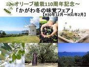 オリーブ植栽110周年記念「かがわ冬の味覚フェア」