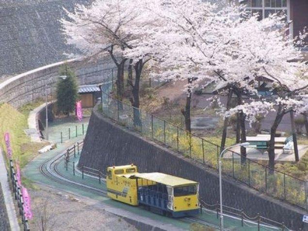 【桜・見ごろ】足尾銅山観光