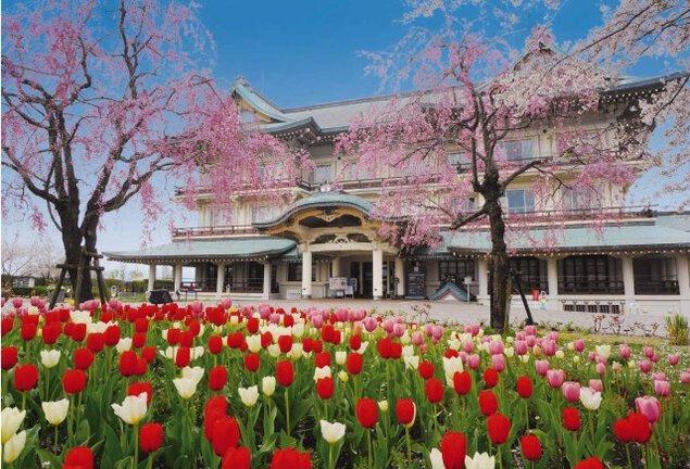 びわ湖大津館 桜&チューリップフェア