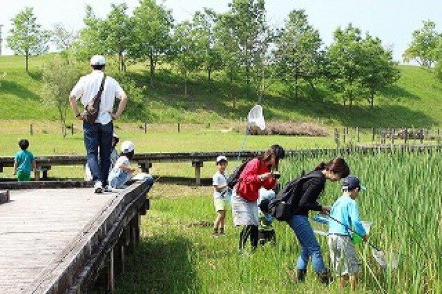 萩の台公園 春の生き物観察会