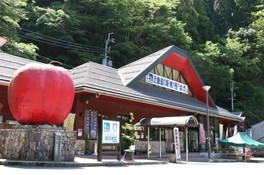 道の駅はが夏休み企画 アマゴのつかみ取り体験と炭火焼き体験