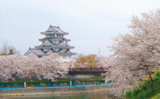 【桜・見ごろ】墨俣一夜城・犀川堤