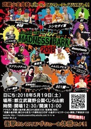 nkw5月公演「MADNESS PARK 2018」