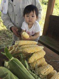農に学べ!遊べ!トウモロコシの収穫体験&農機具小屋の掃除