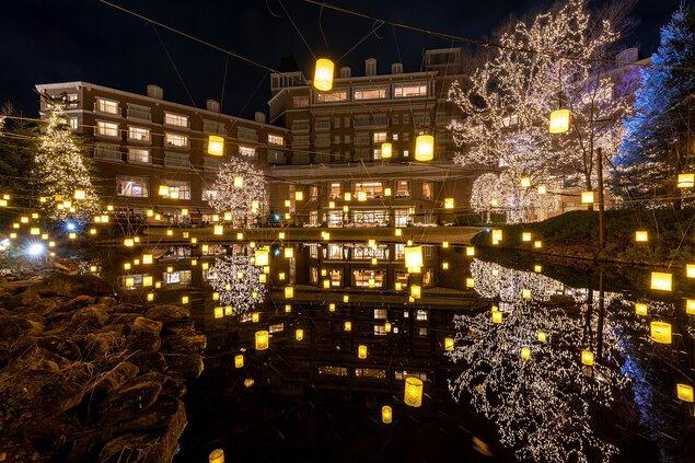 ガーデンイルミネーション2020-2021 ~ランタンが灯る、ひかりの森~