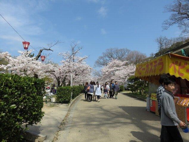 丸亀城桜まつり<中止となりました>