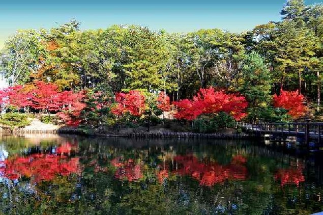 須賀川牡丹園の紅葉