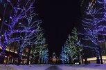 第40回さっぽろホワイトイルミネーション(札幌市北3条広場[アカプラ]会場)
