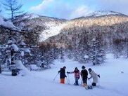 スノーシューハイキング体験ツアー あさま軽井沢「雪原バックカントリー」