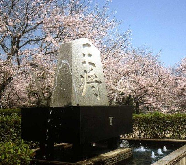 【桜・見ごろ】天童公園(舞鶴公園)
