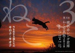 横浜赤レンガ倉庫 ねこ写真展2018
