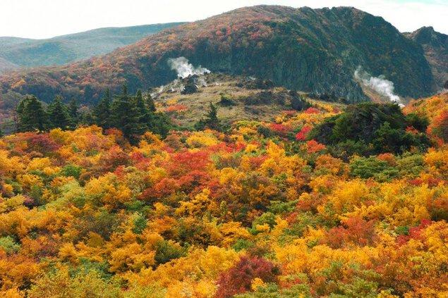 栗駒山(岩手県)の紅葉