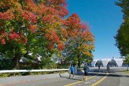 駒沢オリンピック公園の紅葉