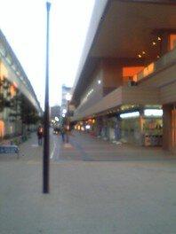 市川駅前アイリンクタウンフリーマーケット(7月)