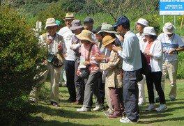 植物観察会(9月)