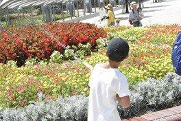 環境特別学習 竹の水鉄砲で花に水を~あすたむで「水の大切さ」を学ぼう~