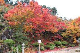 慈徳院の紅葉