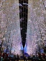 【2020年度開催なし】羽田 Sky illumination (スカイ イルミネーション) 誰も見たことのない光 2019-2020