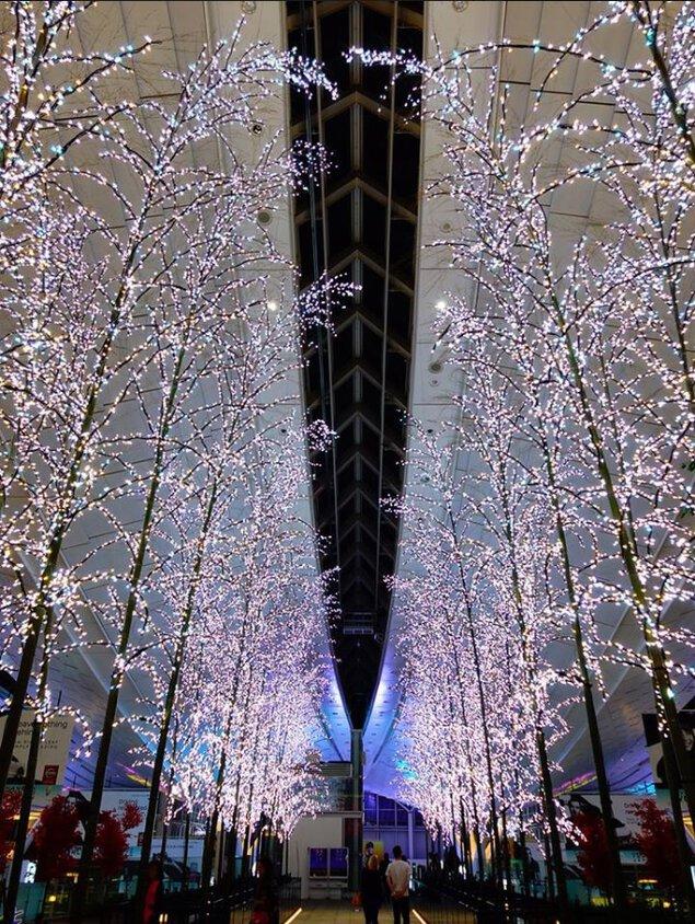 羽田 Sky illumination 誰も見たことのない光 2018-2019