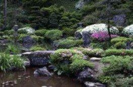 【花・見ごろ】玉川寺 初夏の花(ツツジ、クリンソウ、ハナショウブ)