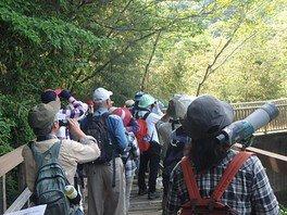 県立淡路島公園 秋の探鳥会