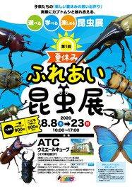 夏休み ふれあい昆虫展