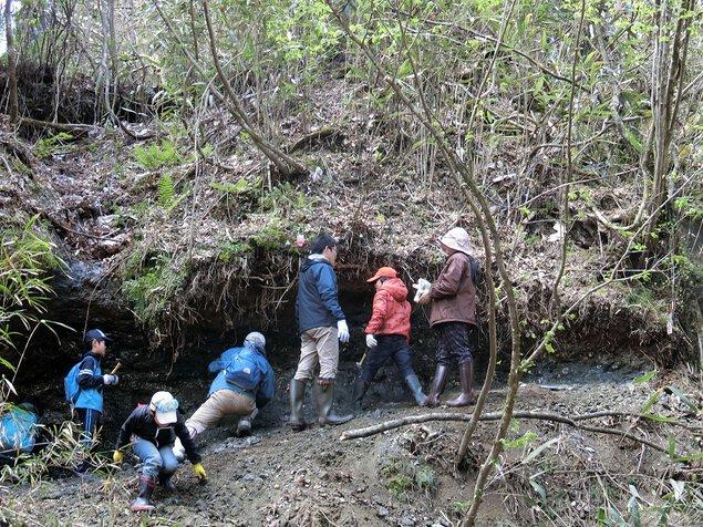 自然観察会「焼河原の化石」