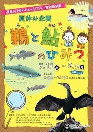 第31回特別展示 夏休み企画「鵜と鮎のひみつ」