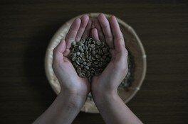 TANABE FARM監修のベトナムコーヒーを楽しむ会