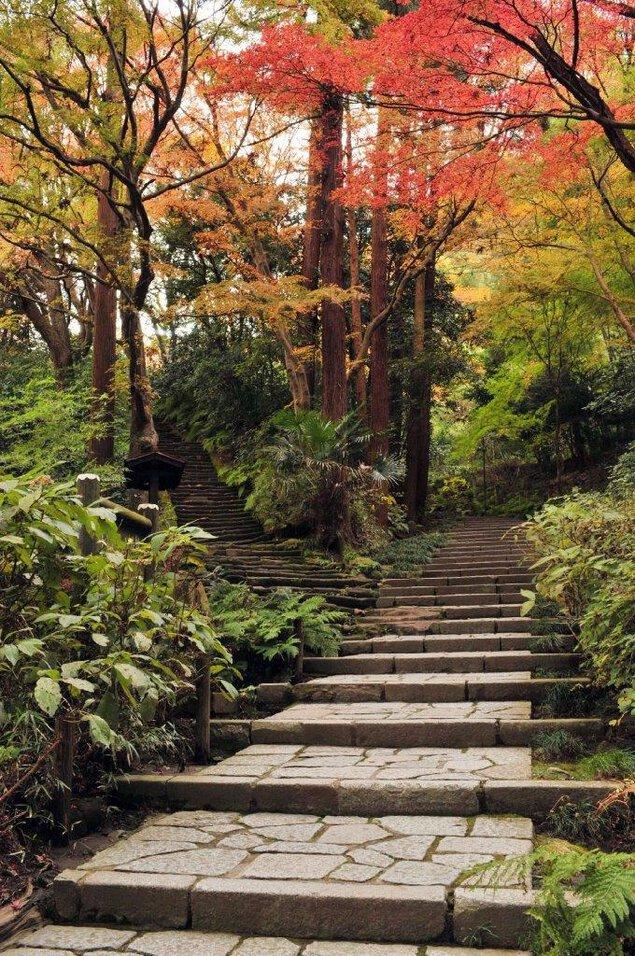 瑞泉寺及びその周辺の紅葉