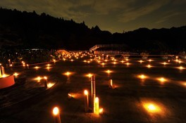 総合公園の花蓮(花蓮光明まつり)