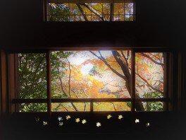 大佛次郎記念館の紅葉