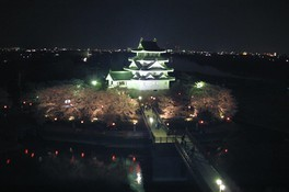 墨俣一夜城址公園・犀川堤の桜