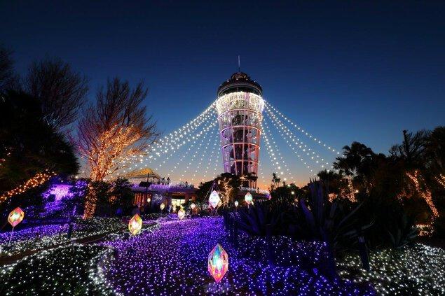 湘南の宝石~江の島を彩る光と色の祭典~
