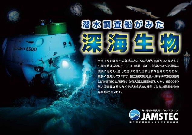 巡回展示パネル展「潜水調査船がみた深海生物」