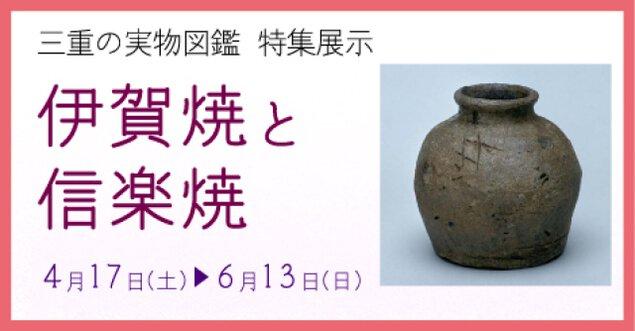 三重の実物図鑑 特集展示 伊賀焼と信楽焼