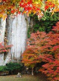 大野寺弥勒磨崖仏の紅葉