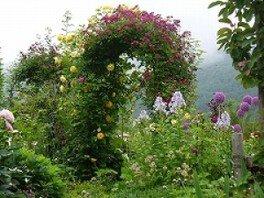 蔵王オープンガーデン山の春~初夏の庭