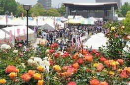 福山ばら祭2018