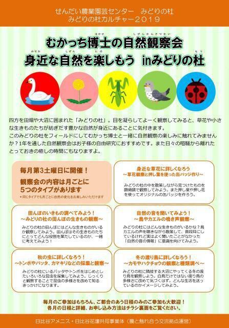 むかっち博士の自然観察会(4月)