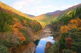 神通峡の紅葉