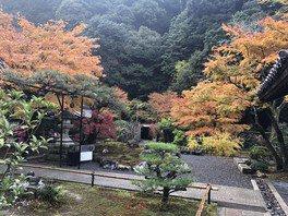 南禅寺 高徳庵(最勝院)の紅葉
