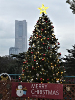 【2019年開催なし】のげやまクリスマス