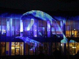 巨大プロジェクションマッピング「KAMORI WONDER LIGHTS」