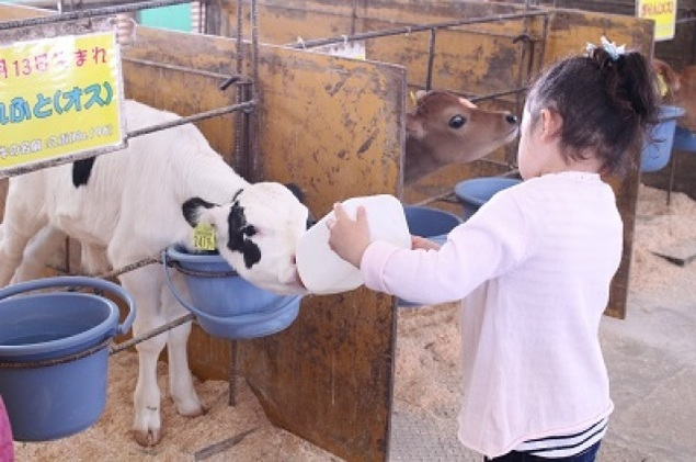 成田ゆめ牧場 牛さんの飼育係(4月)<中止となりました>