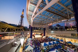 JST Nagoya HAWAI'I Festival 2018