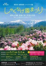 嬬恋村 浅間高原 しゃくなげ園まつり