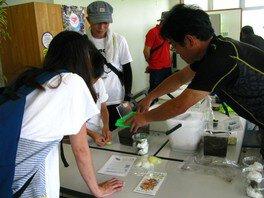 淡路島国営明石海峡公園 カブトムシ、クワガタムシの飼い方教室