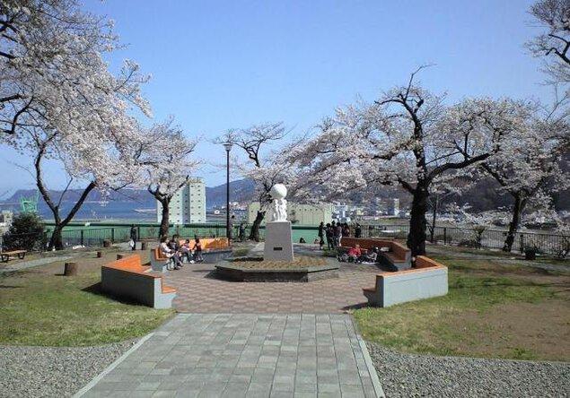 【桜・見ごろ】薬師公園